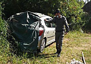 המשטרה פועלת באזור (צילום: דוברות משטרה)