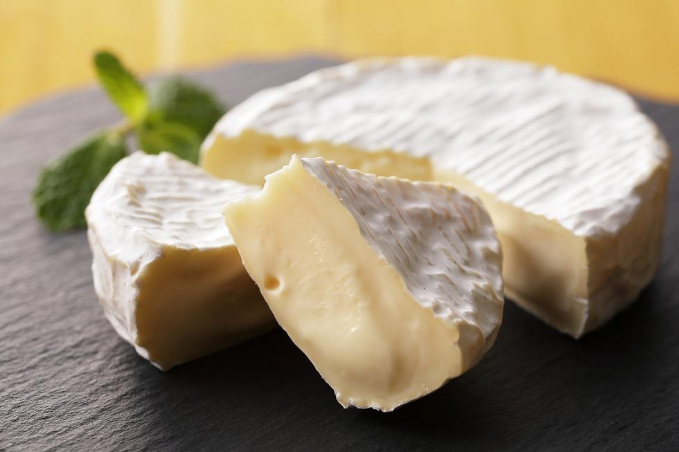 גבינת קממבר (צילום: Shutterstock)