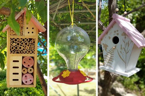 הזמינו את הציפורים  והחרקים הטובים. מימין לשמאל: בית קינון, מתקן האכלה לצופיות ומלונית חרקים (צילום: משתלות יגור)