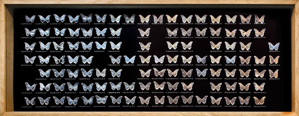 אוסף פרפרי ננוצלולוז, חומר ממוחזר מפסולת טקסטיל או נייר. שובל ובלונדר יצרו פרפרים שצבעוניותם נגזרה מהאנרגיה שהושקעה בתהליך (צילום: ליאוניד פדרול)