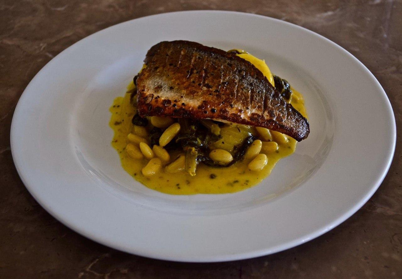 דג ביש בש (צילום: ליאור רפאל)