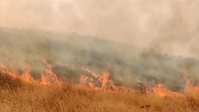 שריפת קוצים סמוך לכביש 325  ליד באר שבע (צילום: תיעוד מבצעי כבאות והצלה)