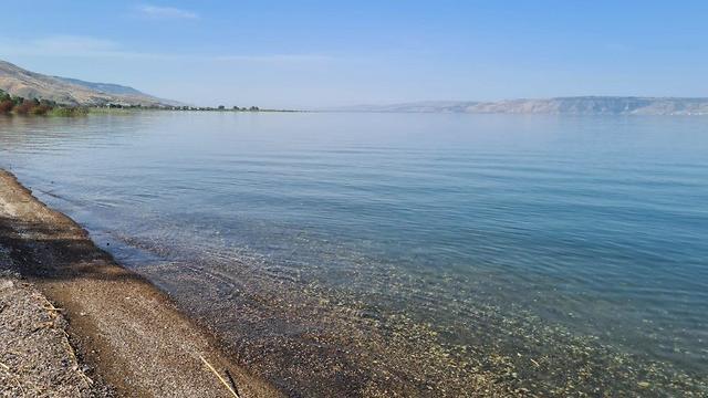 חוף דוגית הבוקר (צילום: איציק לוי, רשות הכינרת)