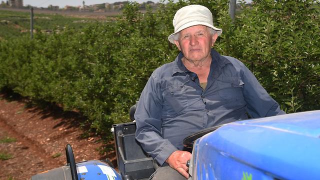 צבי ויינברג, חקלאי ממטולה  (צילום: אביהו שפירא )