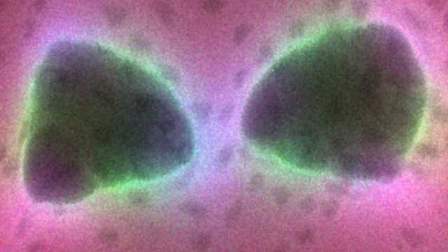 המערכת הניסיונית, הכוללת אנטנת מתכת זעירה (שני ה