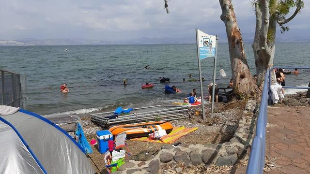 חוף גופרה  (צילום: גיל מועלם רשות הכינרת )