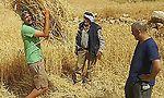 (=צילום: יפתח גץ, בית ספר שדה סוסיא)