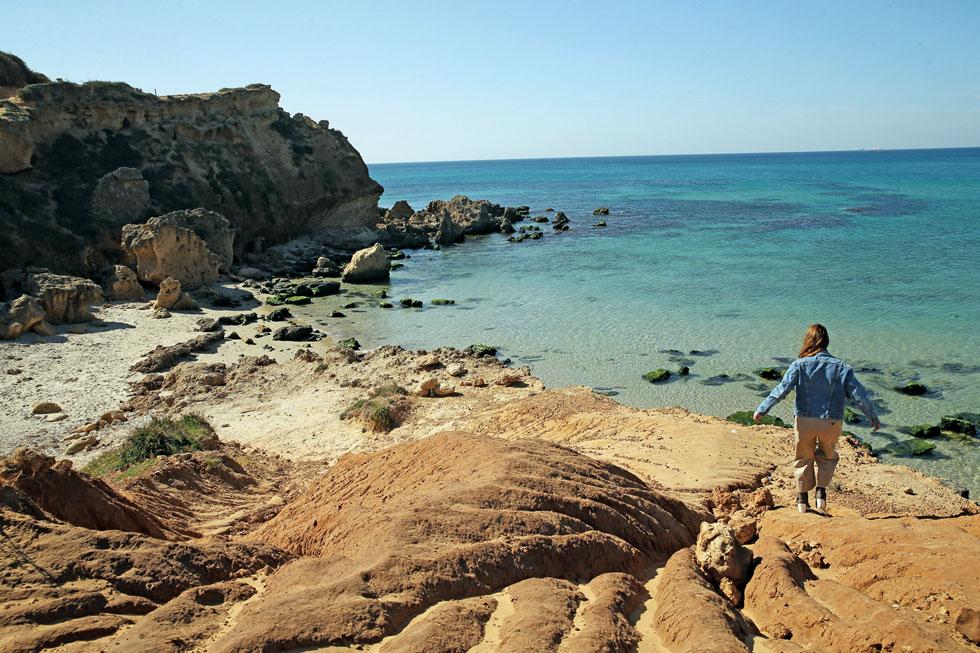 שמורת הטבע חוף גדור. טבע בתולי (צילום: אלעד גרשגורן)