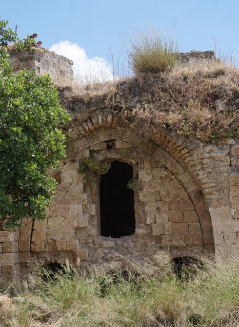 תל קאקון. שפע של צל, שקט ונוף (צילום: צביקה בורג)