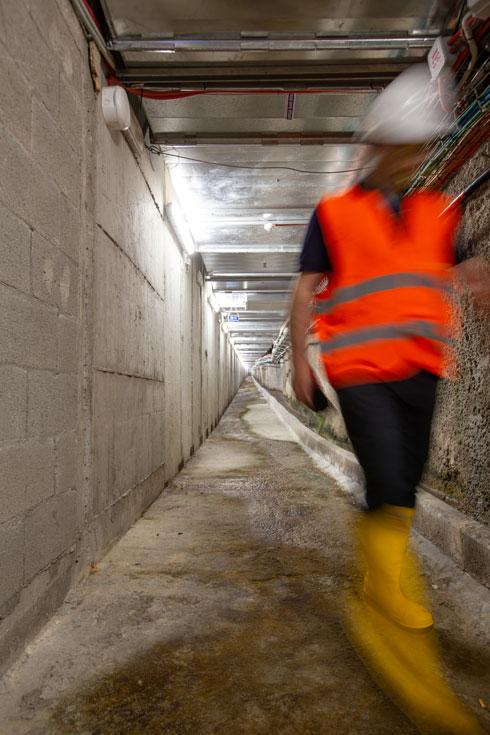 מלבד המשתתפים בסיור, המנהרה כמעט ריקה מאדם (צילום: דור נבו)