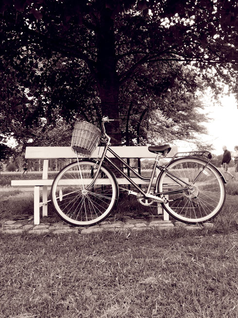 צילום של עופרי כספי, בת 13: האופניים היו כלי התחבורה העיקרי בדבלין בתקופת הקורונה
