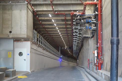 על הקיר הימני בכניסה למנהרה: פסלוני יונים להרתעה (צילום: מיכאל יעקובסון)