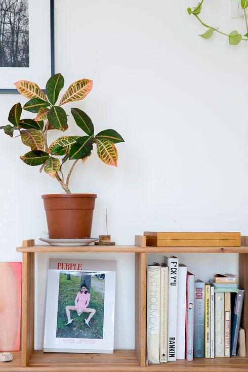"""גיליון מגזין """"פרפל"""" בכיכובה של יאני על המדף בבית (צילום: ענבל מרמרי)"""