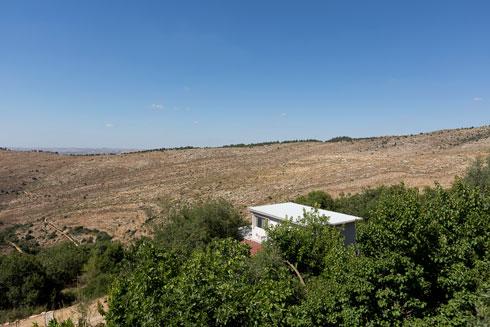 מכאן אפשר לראות את גג ביתה של אלה (צילום: שירן כרמל)