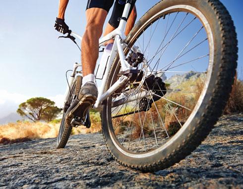 מעלה את הסיכון שלך לפגוע באיכות הזרע (צילום: Shutterstock)
