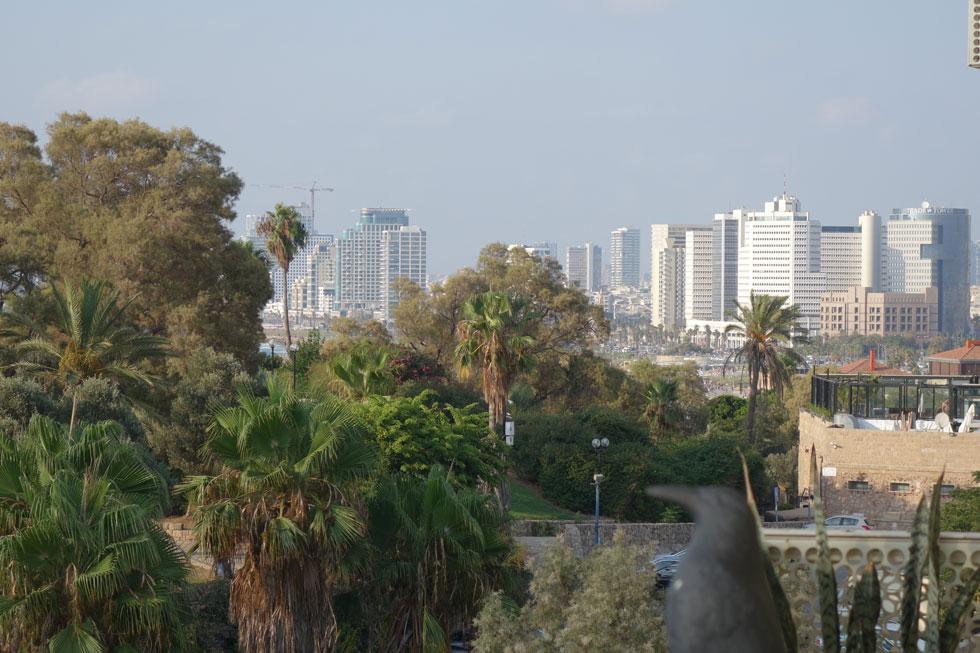 מצד אחד נראה גן הפסגה וקו החוף של תל אביב (צילום: מיכאל יעקובסון)