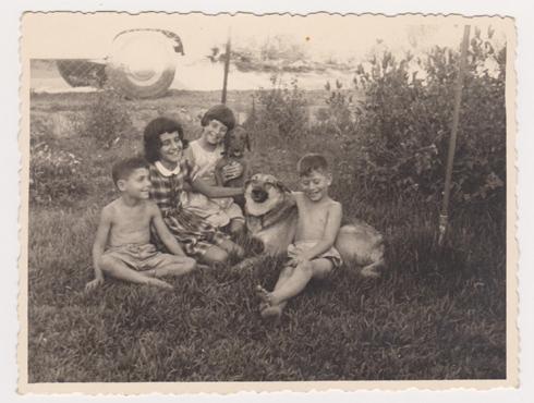 תפוחים ועקיצות דבורים. אסנת (שנייה משמאל) עם אחיה ובני דודיה בחצר בכפר אונו (צילום: אסנת לסטר)