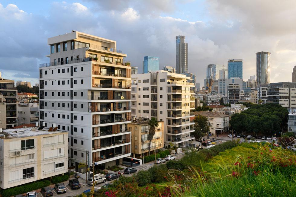 רחובות התמ''א של רמת גן מול הטבע הנדחק. איזו איכות חיים מצפה לדור הבא בעיר? (צילום: יונתן בלום)