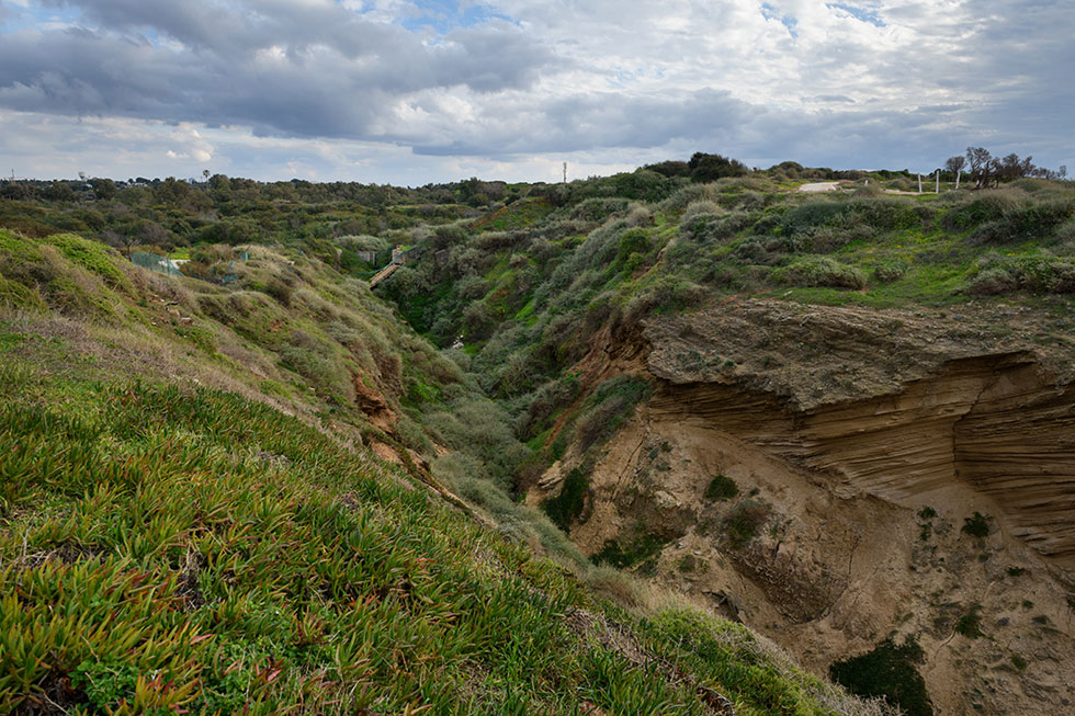 הטבע המרהיב של אפולוניה, בין הרצליה פיתוח לחוף הים, לא ייראה כה פסטורלי ברגע שיינתן האור הירוק לעליית הדחפורים לשטח לטובת 4.000 יחידות דיור (צילום: יונתן בלום)