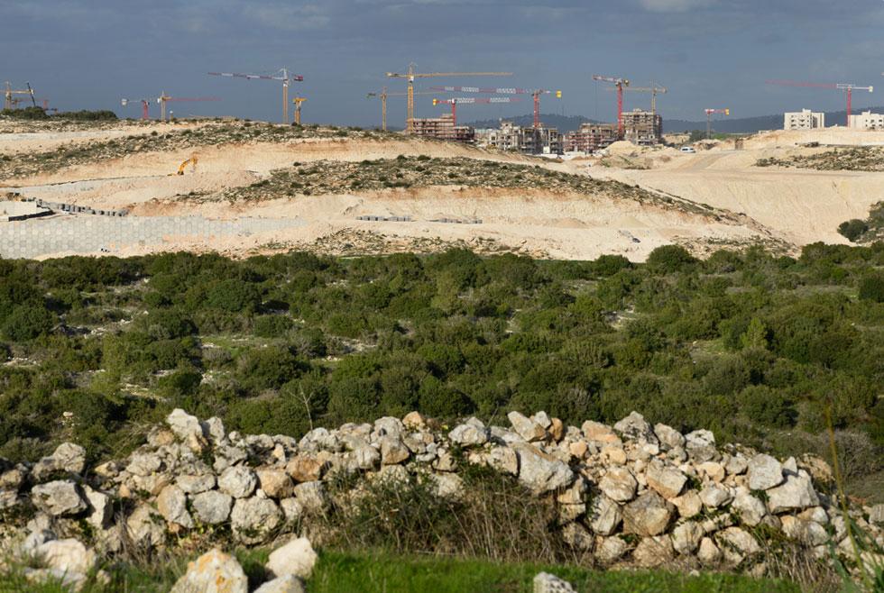 נוף הקדומים של עמק האלה ננגס על ידי המנופים ברמת בית שמש ד'. המאבק הצליח לצמצם את הצרה, אך לא לבטלה (צילום: יונתן בלום)
