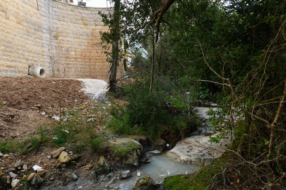 ועוד בחיפה: שפכים ובטון מזהמים את נחל זיו. טיול בוואדיות של העיר מגלה את אפקט הבנייה (צילום: יונתן בלום)