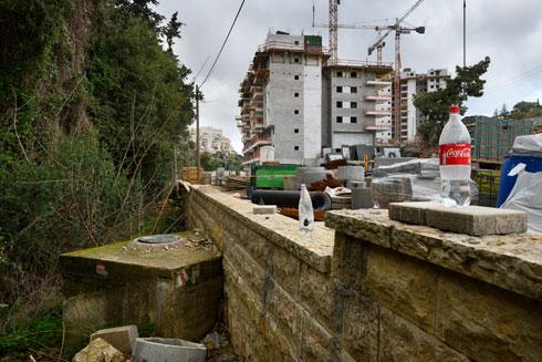 טבע נדרס לטובת מגדלים בחיפה. נחל זיו המזוהם (צילום: יונתן בלום)