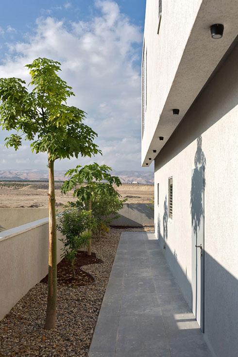 שורה של עצי פרי מקיפה את הבית (צילום: שי אפשטיין)