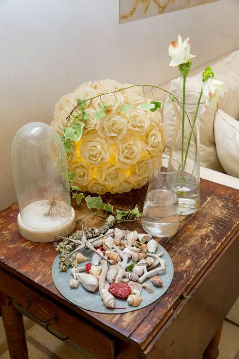 אוסף קונכיות לצד מנורה שעיצבה תמרה יובל ג'ונס (צילום: ענבל מרמרי)