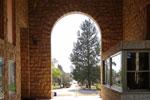 צילום: סער נודל – אוצר מוזאון בית אוסישקין, החברה להגנת הטבע