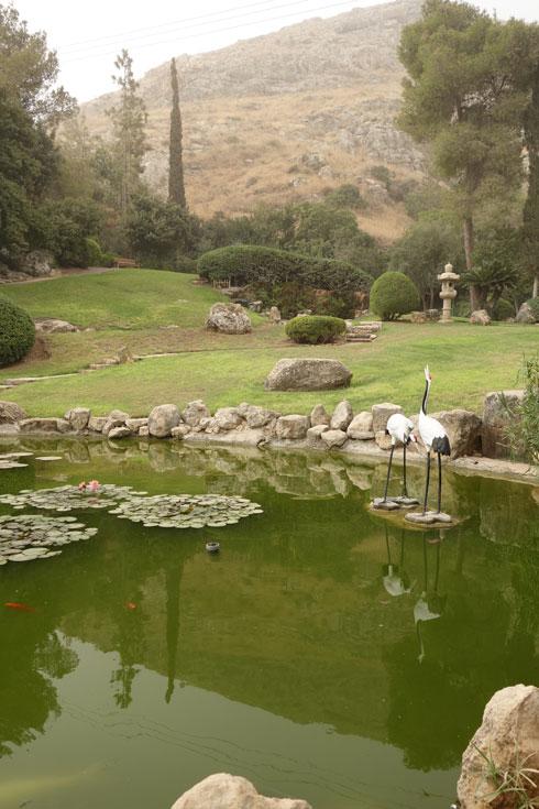 הגן היפני בחפצי-בה (צילום: מיכאל יעקובסון)