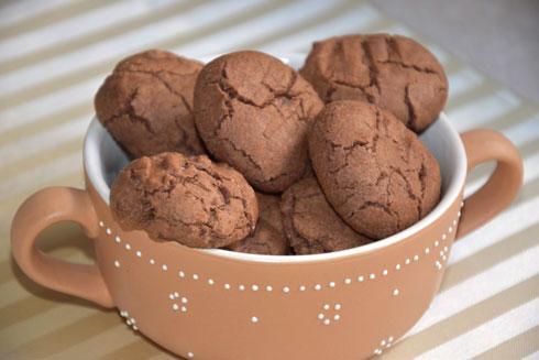 עוגיות שוקולד (צילום: דינה משה)
