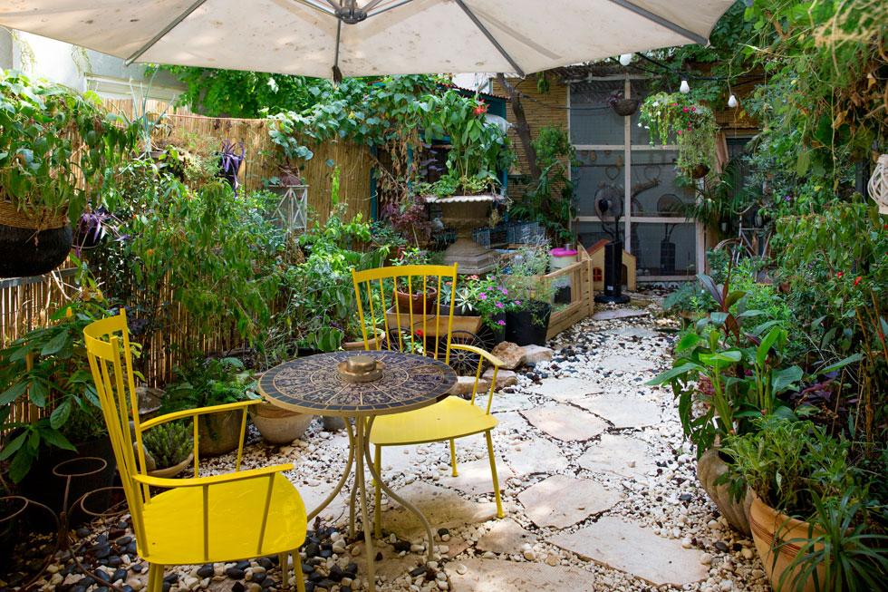 """חצר הבית, שבה מסתתר מיני גן-חיות. """"אם יש לדוד שטח – זה אינסופי"""" (צילום: ענבל מרמרי)"""