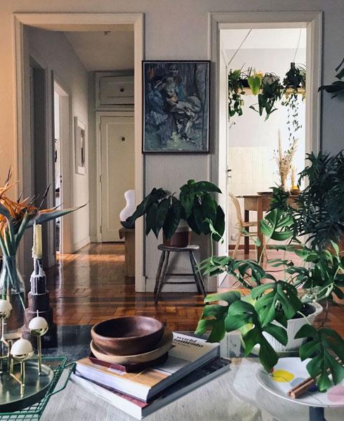 הנה, למשל, מדף צמחים תלוי במטבחו של הצלם הברזילאי דרק פרננדז (צילום: Derek Fernandes )