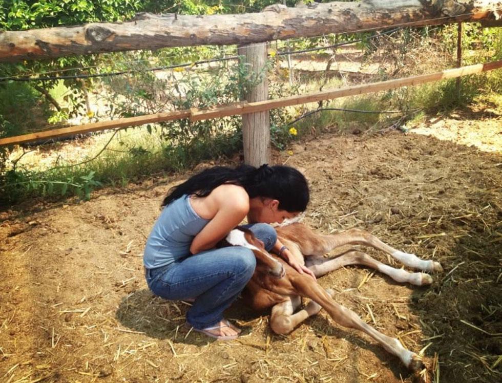 """קספרס באורווה ביגור. """"חלמתי להיות 'הלוחשת לסוסים', כמו בסרט"""" (צילום: אלבום פרטי)"""