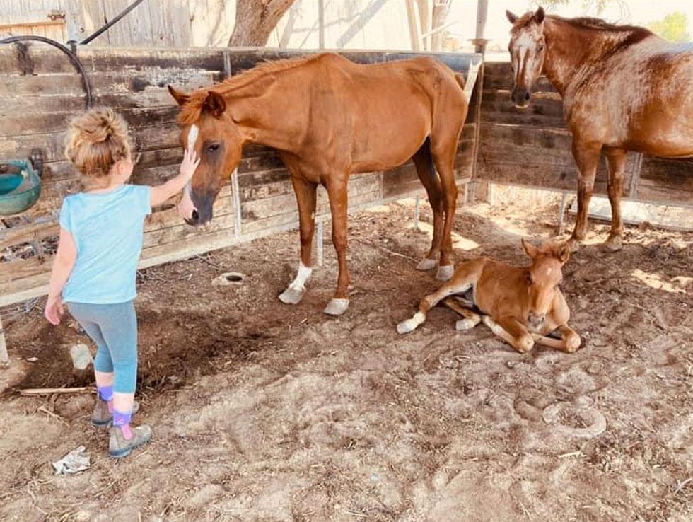 """בתה ריף עם סוסים במושב יבול. """"במצבי חירום, אם אתה חלק מקהילה, ויש לך עם מי לחלוק ועל מי לסמוך, זה אוצר ששווה זהב"""" (צילום: אלבום פרטי)"""