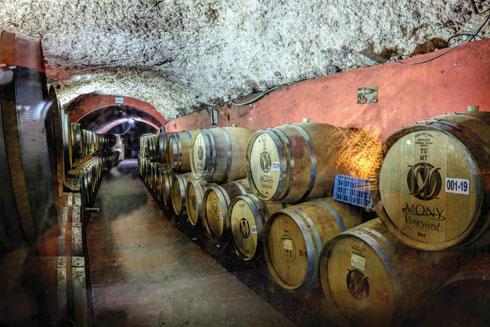 """אולם החביות. המערה ב""""מוני""""  (צילום: shutterstock)"""