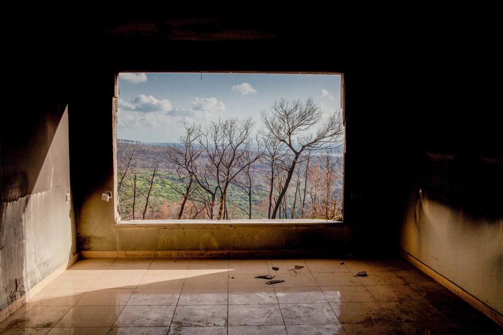 אדווה ברעם טיילה באזור, כשמצאה עצמה בבית אורן, חודשיים אחרי השריפה. ''הלב שלי זעק אליהם, והם זעקו אלי'' (צילום: Adva Baram)