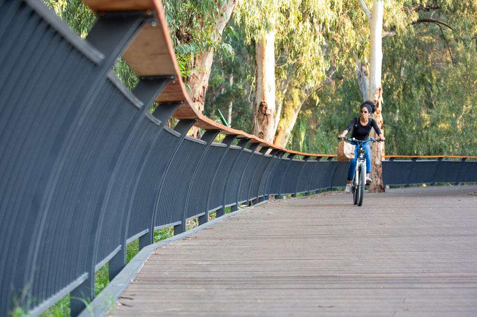 לאורך כ-250 מטרים על גדת הירקון, אפשר ללכת או לרכוב על אופניים על גבי דק מרחף (צילום: דור נבו)