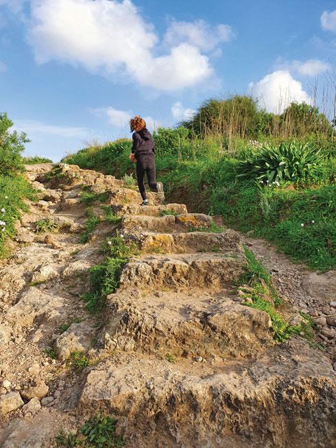 טפסו, יש נוף מרשים. שמורת שער פולג  (צילום: יעל גרטי)