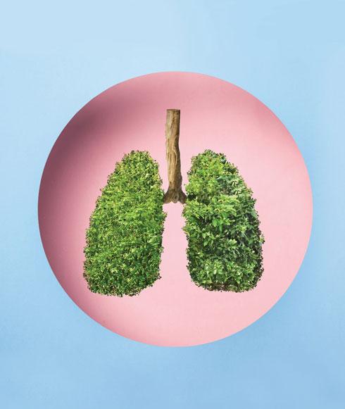 למעשה, שאיפת כמות גדולה של אוויר מפחיתה את יכולת הגוף לספוג חמצן (צילום: Shutterstock)