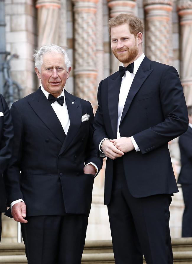 נקמה מגישים קרה. הנסיכים הארי וצ'רלס (צילום: Gettyimage)