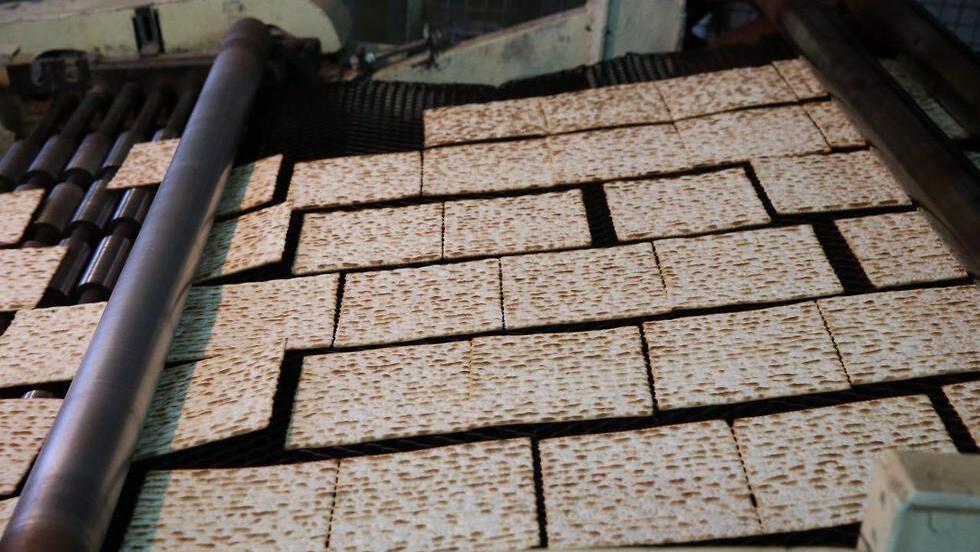 מפעל לייצור מצות אביב