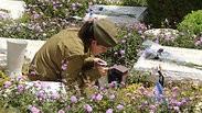 הכנות טקס יום הזיכרון בית עלמין קריית שאול תל אביב