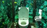 תא שירותים מוקף באקווריום ביפן