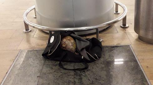 הפרי דוריאן בתיק שהושאר בטרמינל