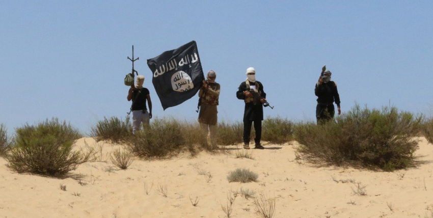 Islamic State fighters in the Sinai Peninsula