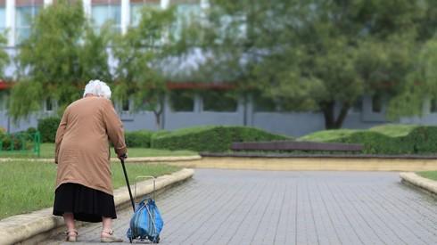 אילוס אילוסטרציה קשישה קשישים