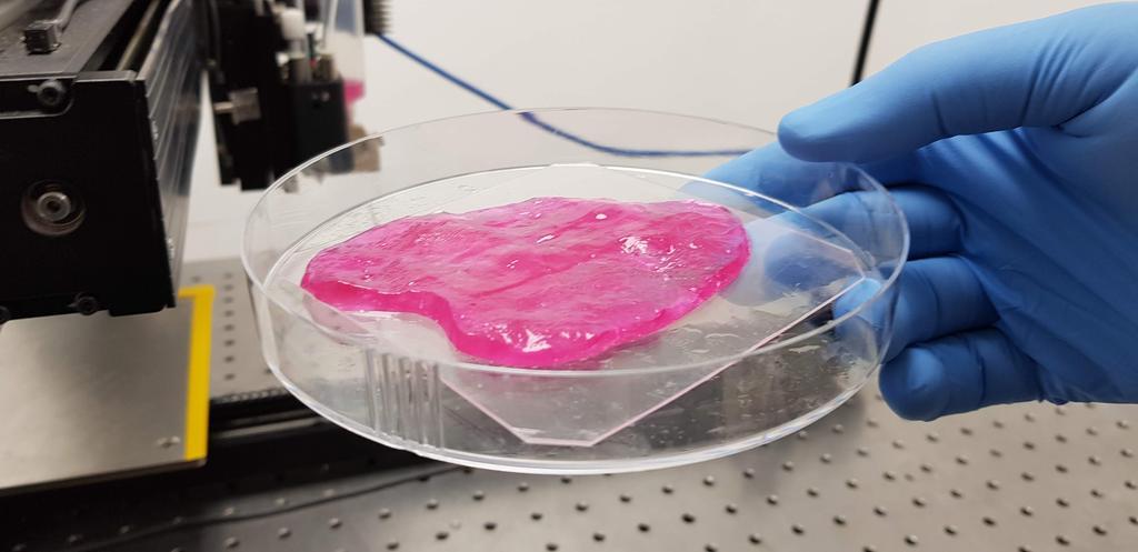 מיט-טק בשר מתורבת הדפסה בתלת-ממד