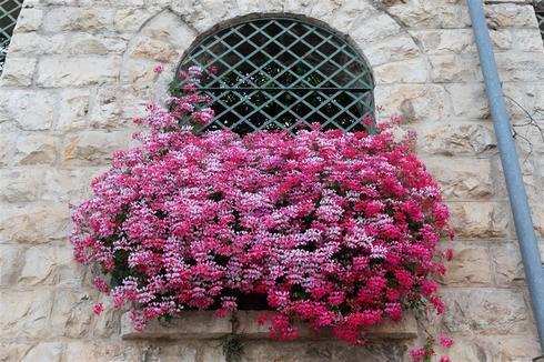 גן ירושלמי