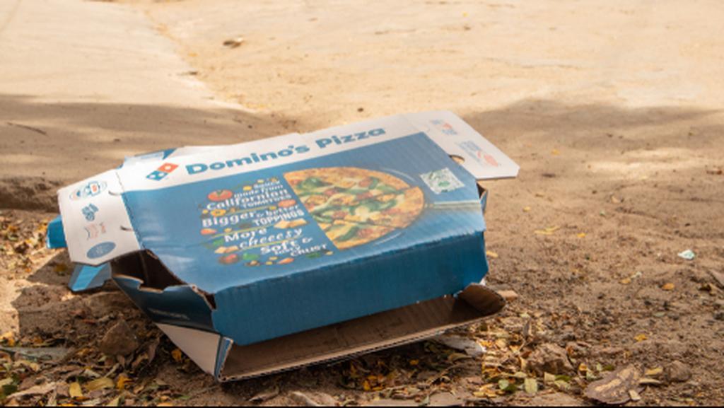 коробка пицца мусор. Фото: lakshmiprasada S, shutterstock